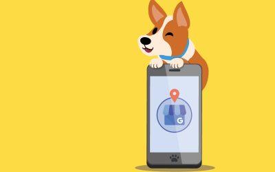 Google My Business, herramienta esencial para tu clínica veterinaria