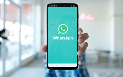 Cómo usar WhatsApp Business en tu clínica veterinaria